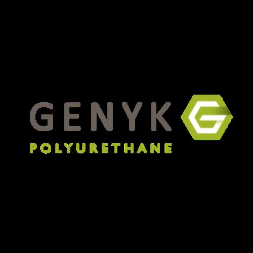 Genyk Spray Foam