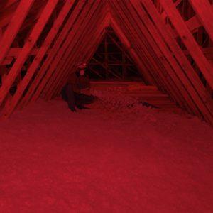 attic insulation red